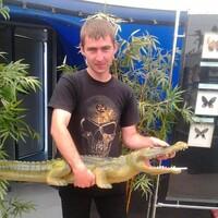 Алексей, 34 года, Весы, Пермь