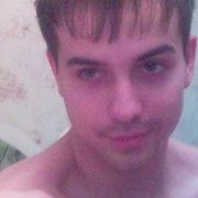 linar, 31