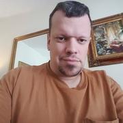 pj nicolai, 39, г.Якима