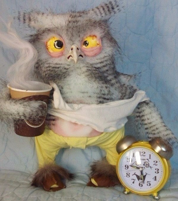 Смешная картинка с добрым утром сова